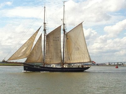 Last of the Sail Greenwich vessels to leave, Gallant, under full sail